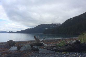 Am Ufer des Lowell Point, Alaska